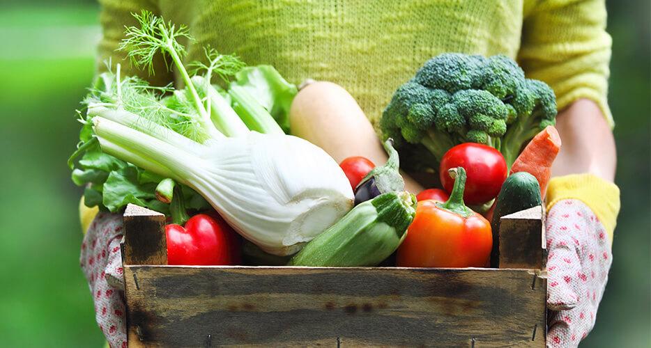 Better for you: i benefici e le proprietà di frutta, verdura e ortaggi